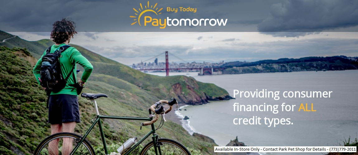 PayTomorrow graphic.jpg
